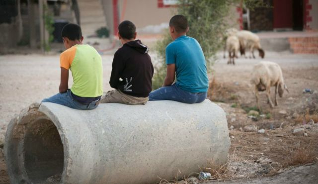 Ali, Mohammed and Yusuf (not their real names) all work on West Bank settlement farms, for 10 shekels per hour.  Photo by David Bachar